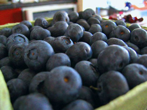blueberries_superfoods